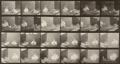 Foto de Crítica: Chickens Scared by Torpedo (1887)